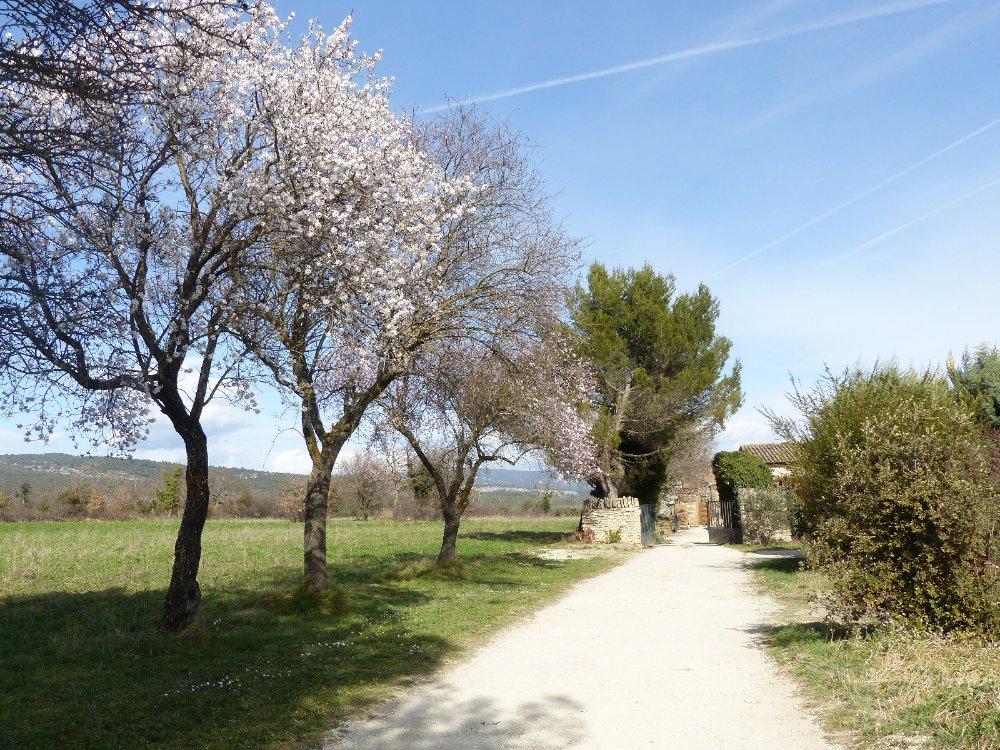 Aire camping-car à Gordes (84220) - Photo 3